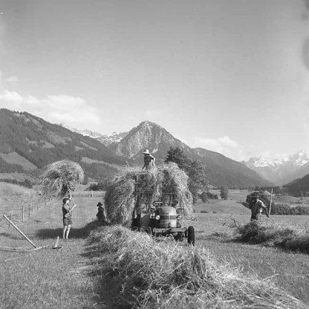 Heuernte im Allgäu im Jahre 1956 - Foto auf Leinwand
