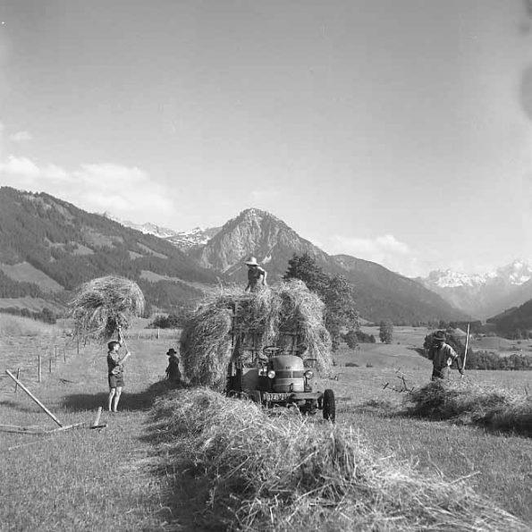 Heuernte im Allgäu im Jahre 1956