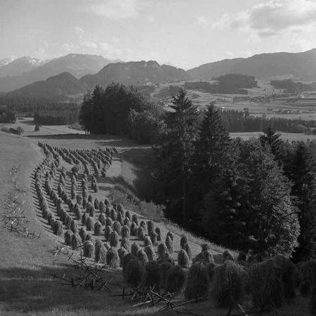 Huinzenlandschaft im Allgäu - Foto auf Leinwand