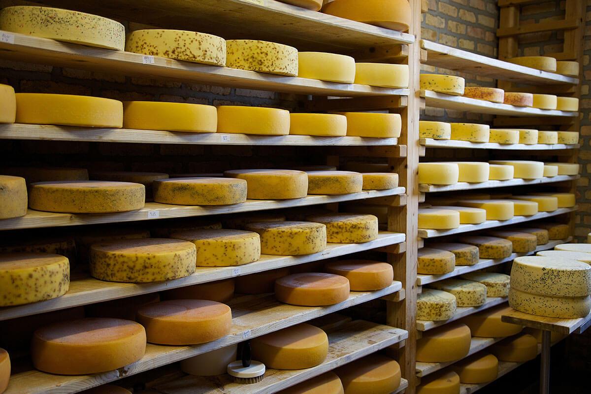 Erlebnisreiche Sommerfrische im Allgäu. Eine beliebte Thementour ist die Käsewanderung mit Besichtigung und Kostprobe.